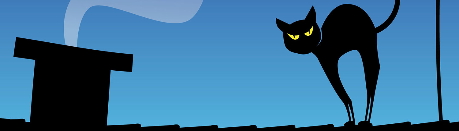 Cat on a roof banner